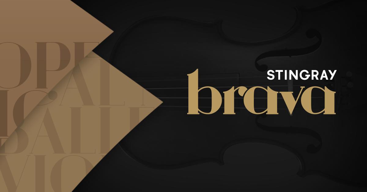 Business People Icon Png Stingray Brava | Cha&#...